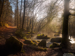 la Rivière d'Argent (Paul Kerrien) Tags: finistere poselongue bretagne campagne rivière bzh