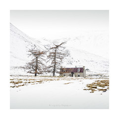 The Abandoned Bothy (pixellesley) Tags: fineartphotography gicleeprintsavailable scotland winter snow building abandoned bothy shelter trees cold icy wind wildlife mountains inverness lesleygooding landscape