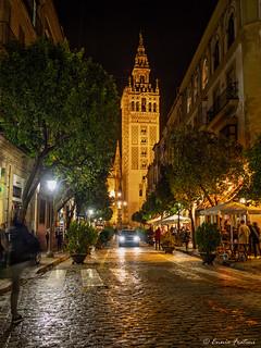 Escena nocturna - La Giralda - Sevilla