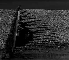 Groyn Shadows (ianbartlett) Tags: 365 outdoor wildlife nature birds flight monochrome sea sand water dogs groynes drone landscape light colour seal