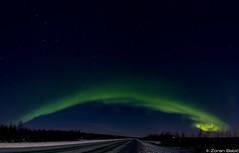 Z19_0697-Pano-Edit LT (Zoran Babich) Tags: winter snow lapland lappi finland suomi northernlights auroraborealis
