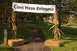 corn-maze-entrance-300x200