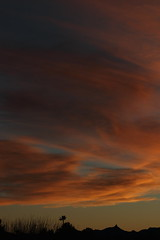 Sunset 3 3 19 #07 (Az Skies Photography) Tags: march 3 2019 march32019 3319 332019 canon eos 80d canoneos80d eos80d canon80d rio rico arizona az riorico rioricoaz sun set sunset dusk twilight nightfall sky skyline skyscape cloud clouds arizonasky arizonaskyscape arizonaskyline arizonasunset red orange yellow gold golden salmon black