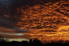 Sunset 11 29 18 #53 (Az Skies Photography) Tags: sun set sunset dusk twilight nightfall sky skyline skyscape rio rico arizona az riorico rioricoaz arizonasky arizonaskyscape arizonaskyline arizonasunset cloud clouds red orange salmon yellow gold golden black skyfire canon eos 80d canoneos80d eos80d canon80d november 29 2018 november292018 112918 11292018