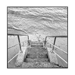 stairs • villerville, normandy • 2018 (lem's) Tags: stairs escalier sea mer ocean beach plage villerville normandy normandie rolleiflex t