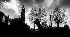 Calo (Noel F.) Tags: sony a7iii voigtlander 15 iii vm san xoan calo teo galiza galicia