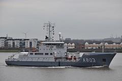 HNLMS Luymes A803 (1) @ Gallions Reach 21-03-19 (AJBC_1) Tags: riverthames gallionsreach northwoolwich newham londonboroughofnewham eastlondon london england unitedkingdom uk ship boat vessel warship navy navalvessel royalnetherlandsnavy hnlmsluymes a803 surveyvessel military dlrblog ©ajc militaryvessel ajbc1 nikond5300 hydrographicsurveyvessel