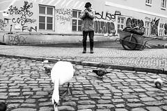 Prague, 2018 (LivBelko) Tags: praha prague streetphoto streetphotography streetshot blackandwhite street ciernobiela