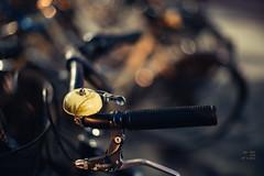 The dark side of a bike_#49/100 Bike Project (pierfrancescacasadio) Tags: febbraio2019 24022019840a8726 bike bikeproject 100bicycleproject 49100 50mm wideopen black 100 bicicletta bokeh