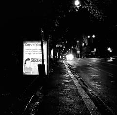 """Bus Stop"" (giannipaoloziliani) Tags: stphotographia liguria lightandshadow street centre centro strada lamps genoa genova flickr nikon nikoncamera nikonphotography downtown obscure oscuro scuro dark darkness buio pioggia rain citynight city biancoenero italia italy busstop notte streetphotography obscurity night nero black blackandwhite noir"