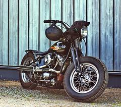 Harley Davidson Shovelhead (olds.wolfram) Tags: harleydavidson harley shovelhead shovel motorrad motorcycles moto 2rad bike