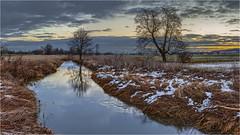 Morgenstund (Robbi Metz) Tags: germany bavaria reischenau zusam landscape trees creek water sunrise sky canoneos