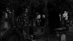 Mittendrin statt nur dabei (MikeSolfrank) Tags: straubing nacht night black düster friedhof cemetery ruhe death live tod leben kreuz kruzefix stpeter old alt stimmung