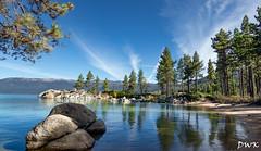 Mile-High Smile Maker (Don's Photostream) Tags: powershot sandharbor pine laketahoe fish g1xmarkiii canon fir swim 6000elevation