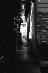 Campbell, California (bior) Tags: campbell california apartment home suburbs residential leicam3 leica ilfordpanfplus panf panfplus 50mm summicron 35mmfilm