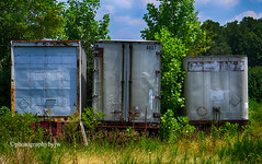 End of the Road (Photographybyjw) Tags: end road i was heading down country way nowhere particular saw these trailers wasting away found north carolina ©photographybyjw rural foliage trees weeds