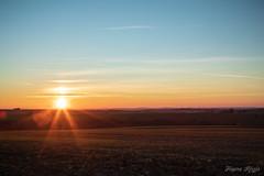 Sur les hauteurs de la Bombach (regisfiacre) Tags: coucher soleil paysage landscape sunset sundown lorraine moselle france nuages clouds nature canon 5div mark iv 4 plein format full frame 24105mm l ciel sky himmel sun sonne eolienne