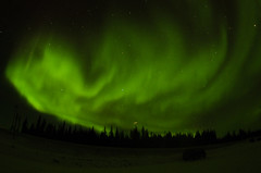 March Madness-105 (juan_guthrie) Tags: northernlights yellowknife nwt aurora