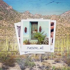 Tucson Polaroids (Edmonton Ken) Tags: tucson polaroid barrio house bike desert cactus saguaro mountains park travel destination sand green sombrero wall corn door composite photoshop mural