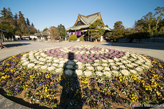 Silhouette (takashi_matsumura) Tags: silhouette shadow portrait naritasan shinshoji temple narita chiba japan ngc nikon d5300 成田山 新勝寺 成田 千葉 afp dx nikkor 1020mm f4556g vr
