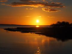 sunset (evablanchardcouet) Tags: sunset coucherdesoleil nature mer sea trees outside olympus audenge gironde france groupenuagesetciel