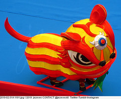 2019-02-31A 1191 New Taipei City Lantern Festival 2019 (Badger 23 / jezevec) Tags: dragon dragonboat festival taiwan history culture travel tourism duanwufestival zhongxiaofestival 忠孝節 龍船節 龍舟節 端午节 端午節 龍舟 龙舟 龍船 龙船 taipei ֵ台北 臺北市 taipeh taןpeh ταϊπέι 타이페이 тайбэй 台北市 ტაიბეი تايبيه taibei đàibắc taipé tchajpej rowing sports boat barco шлюпка 배 ボート barca βάρκα bateau 小船 člun veneillä csónak łódź boating vessel photo picture image watersports watercraft asia tradition teamwork water 大佳河濱公園 dajiariversidepark