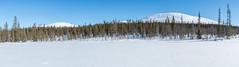 Pallastunturit, Pallas Fells (akkujala) Tags: fell finland lapinluonto lapland lappi lappishnature suomi talvi tunturi winter muonio pallas snow