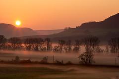 Iudica (Aspenlaub (blattboldt)) Tags: morning sunrise orange landscape hill tree zeiss sony carlzeiss ilce7rm3 alpha7riii manualfocus manualiris manualexposure specialthankstochristophecasenaveandhisteamfromzeissfortheirpersonalinvolvementinthedevelopmentoftheloxialensline ⚶ emount berakhah בְּרָכָה loxia2485 loxia2485sonnar 85mm 51695547 sonnar scene topographic choreographic laudātū europe germany thuringia jena gleisberg mist early sky mystic glory shine rays fog foggy misty mittleressaaletal
