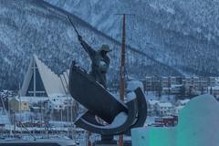 Tromsö 2019 (591 von 699) (pschtzel) Tags: 2019 nordlicht tromsö