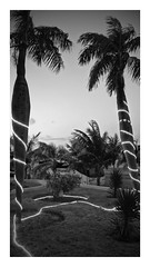 2014-12-05_17-56-46_ILCE-6000_1168_DxO-EFFECTS (Miguel Discart (Photos Vrac)) Tags: 2014 createdbydxo cuba dxo editedphoto vacance visite voyage ilce6000 sony sonyilce6000