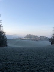 Morningwalk (Rosmarie Voegtli) Tags: iphone hiking dornach winter frost
