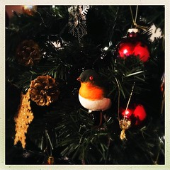 Robin Redbreast (Julie (thanks for 8 million views)) Tags: hipstamaticapp hww squareformat wingwednesday bird christmastree festive iphonese 2019onephotoeachday ireland irish 100xthe2019edition 100x2019 image2100
