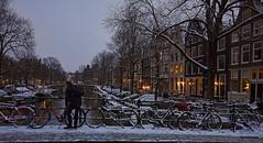 Amsterdam. (alamsterdam) Tags: amsterdam brouwersgracht canal man bikes evening reflection bridges snow boats cars