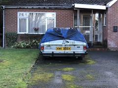 1982 ford cortina 2.0 gl estate (josh@mgmsolihull.co.uk) Tags: mk4cortina abandonedcars abandoned cortina fordcortina ford