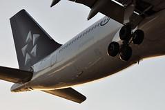 CA0787 PEK-LHR (A380spotter) Tags: approach landing arrival finals shortfinals threshold tail tailfin verticalstabiliser rudder horizontalstabiliser elevator empennage undercarriage landinggear maingear belly airbus a330 200 b6091 staralliance 中国国际航空公司 airchina cca ca ca0787 peklhr runway27r 27r london heathrow egll lhr