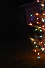 Missed this one (earthdog) Tags: 2018 nikon nikond5600 d5600 18300mmf3563 christmas decoration light christmaslight sanjose willowglen soft blur lowlight night tree