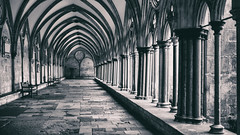 early morning in the cloisters (Redheadwondering) Tags: 119picturesin2019 salisbury wiltshire canon40mmf28cheapadapter canon cathedral salisburycathedral church cloisters 25columns 25 columns blackwhite bw