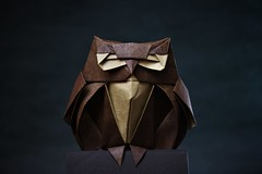 Owl - Roman Diaz (pierreyvesgallard) Tags: origami owl buho hibou roman diaz animal bird paper folding papercraft