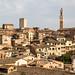 Siena Townscape