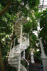 Greenhouse Spiral Staircase (Bri_J) Tags: butterflyhouse greenhouse copenhagenbotanicalgarden botaniskhave universityofcopenhagen copenhagen denmark københavn danmark spiralstaircase staircase