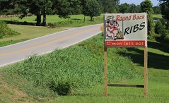 Self immolation is so hot right now. (haint_blue) Tags: canon mississippi forest ms sign signage words country rural