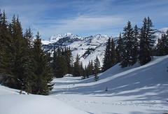DSCF3732 (Laurent Lebois ©) Tags: laurentlebois france nature montagne mountain montana alpes alps alpen paysage landscape пейзаж paisaje savoie beaufortain pierramenta arèchesbeaufort