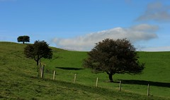 Trio (RoystonVasey) Tags: canon eos m 1855mm stm zoom north yorkshire dales ydnp west burton wensleydale waldendale