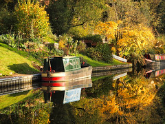 Reflected colours (jeff.dugmore) Tags: england uk europe midlands southstaffordshire kinver autumn canal waterways water barge boat narrowboat leaves trees green yellow gold reflection grass red nature outside outdoors walking hike towpath foliage olympus britain colours rural countryside tranquil serene scenic light golden fall staffordshireandworcestershirecanal