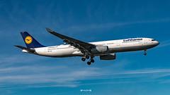 D-AIKP Lufthansa Airbus A330-300 (José M. F. Almeida) Tags: spotting lisboa lisbon lis lppt aircrafts airplane airport airlines airways aircraft daikp lufthansa airbus a330300