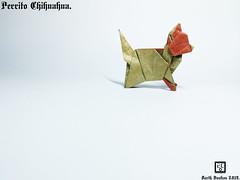 Perrito Chihuahua - Barth Dunkan. (Magic Fingaz) Tags: anjing barthdunkan chien chó dog hond hund köpek origami paperfolding perro pies пас пес собака หมา 개 犬 狗 chihuahua ecorigami art origamidog