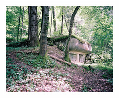 Reduit (iconicturn) Tags: reduit switzerland bunker nature lostplaces abandoned newtopographics film mediumformat 120 6x7 kodak portra mamiya7 mamiya forest