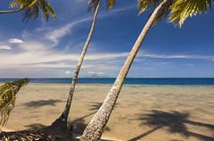 Island (Joost10000) Tags: polynesie francaise french polynesia tahaa pacific ocean beach palm palmtree palmier sea water lagoon borabora bora scenic seascape canon canon5d eos sky blue island pacifique