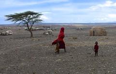 Kenya- Turkana lake (venturidonatella) Tags: kenya africa turkana turkanalake lagoturkana persone people gentes gente colori colors villaggio turkanavillage villaggioturkana rosso red deserto desert riftvalley nikon nikond500 d500 children bambini donna woman
