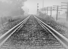 Tracks..... (Kevin Povenz Thanks for all the views and comments) Tags: 2011 august kevinpovenz westmichigan michigan ottawa ottawacounty hudsonville blackandwhite bw tracks railroad stones foggy weather metal morning